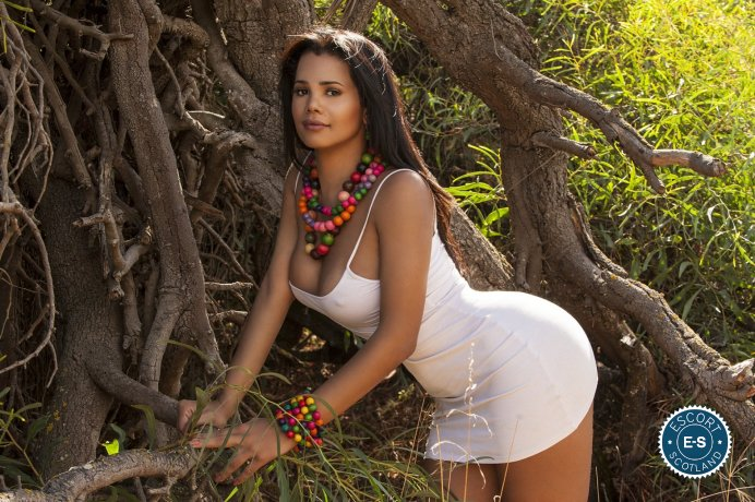Spend some time with Shemale Elyda Andrade in ; you won't regret it