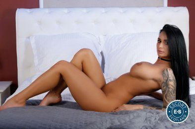 Spend some time with Big Boobs Ariana  in Glasgow City Centre; you won't regret it