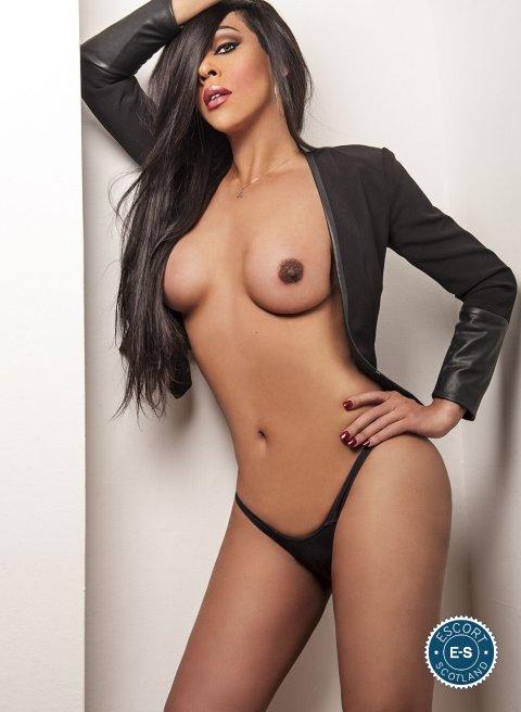 TS Nicolly Araujo is a super sexy Brazilian escort in Dundee