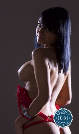 Spend some time with Arriana Hot Brunette in Aberdeen; you won't regret it