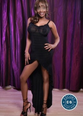 Jina is a super sexy Caribbean escort in Falkirk Town, Falkirk
